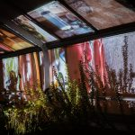 Image of colorful projection on the windows os the Univeristy of Maine greenhouse